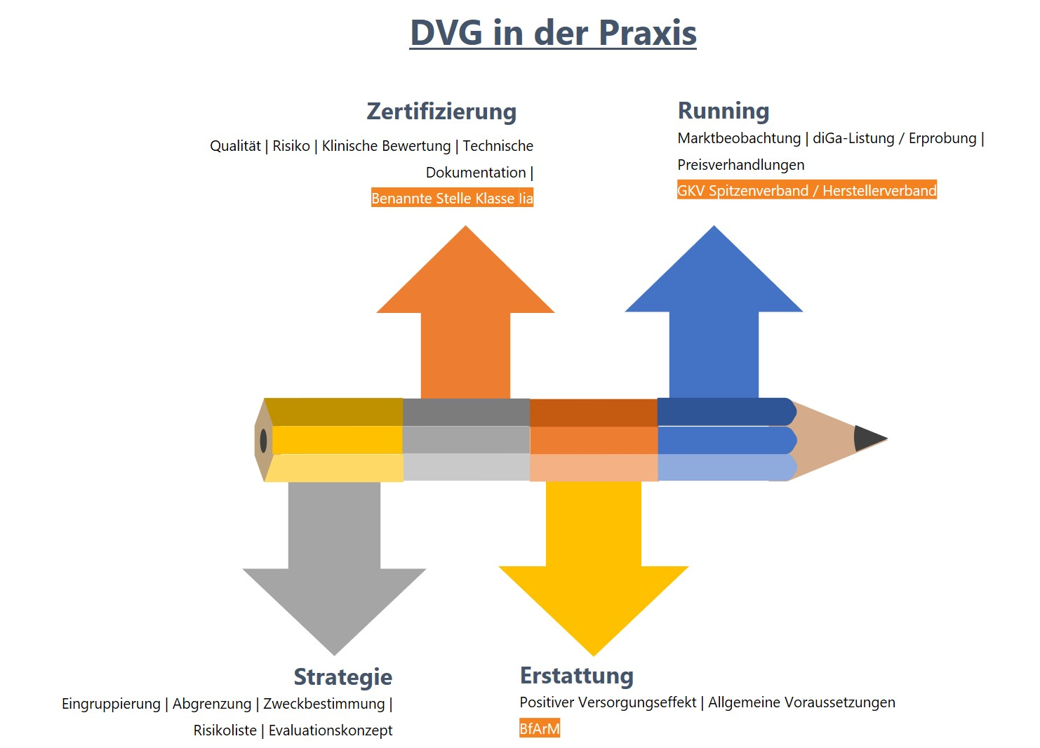 DVG in der Praxis